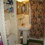 White Birch Bathroom