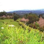 View from Ambua Lodge