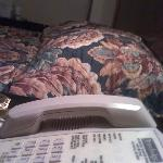Roach Bed