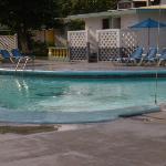 """the Pool Area"""
