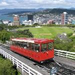 Nice View of Wellington