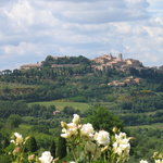 View of Montepulciano from Pulcino's restaurant garden