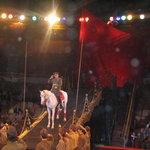 Eburg circus -www.Ekaterinburg.TK