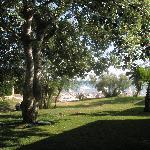 gardens surrounding the asterias