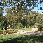 gardens surrounding asterias