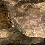 Bushmen cave painting