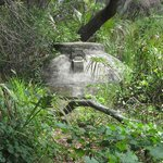 Cistern on trail at Atsena Otie Key