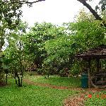 Garden @Imm Eco
