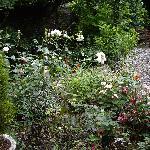 Jesmond hotel garden