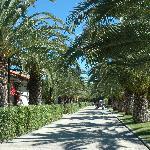 Foto di Villaggio Turistico Lido d'Abruzzo
