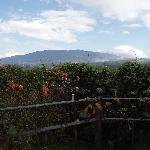 View of Volcan Poas from the landing in the gardens