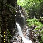 Flume Gorge- a short drive up Rte.3
