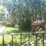 bellos jardines al salir a la terraza