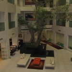 Atrium Avalon Courtyard