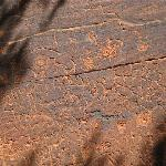 V-V Petroglyphs, located close-by to Sedona Pines
