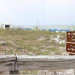 Caledesi from beach walk way 2