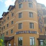 Hotel Coandi