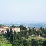 Castellina / Fonterutoli / Siena