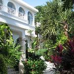 Tropical Casablanca
