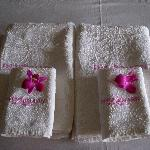 Asciugamani freschi
