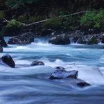 Nooksack River, Douglas Fir CG