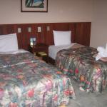 Ceiba Tops Lodge Explorama Lodges