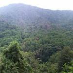 Smokey Mountain Panorama Shot
