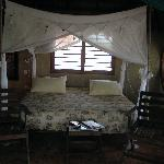 palapa swing bed