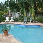 Awesome warm salt water pool