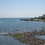 Foto de The Sparhawk Oceanfront Resort