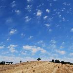 Landschaft bei Massa Maritima