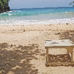 An interesting bench...