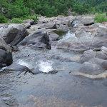 Cossatot River State Park