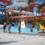 Sea Life Park Water Slides