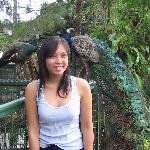 Residence Inn, Tagaytay