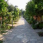 Foto van Ozlem Garden