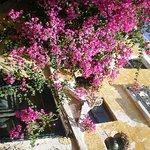 Photo de Hotel Dina