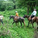 Riding horses on the farm