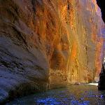 Zion Narrows - stunning scenery