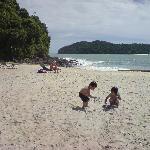 the lovely beach...
