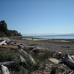 Goose Spit in Comox Valley
