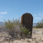 Rhyolite graveyard