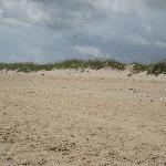 Short Ride to beautiful Sandbridge Beach