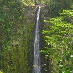The tallest waterfall in Hawaii