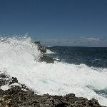 Rogue wave crashing onto cliffs