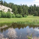 Beaver Pond along the bike trail