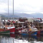 Morning in Ullapool harbour
