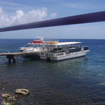 Castle Comfort Diving Lodge/Dive Dominica Photo