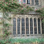 more climbing roses at Haddon Hall