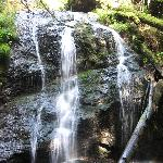 Don't miss the waterfall on the island - easy walks